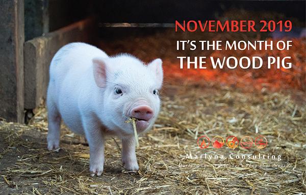 Wood Pig Month, November 2019